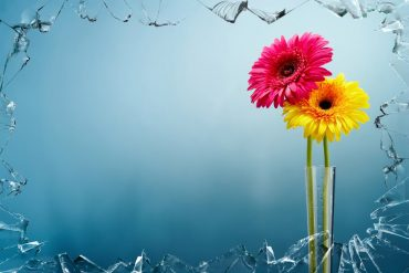 artwork-colorful-art-flowers-68604